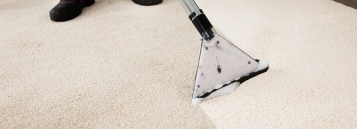 White Rug being professionally cleaned